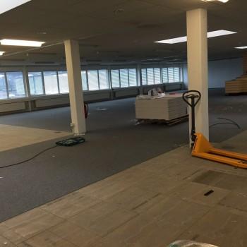 erneuerung-des-teppichbodens